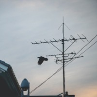 TV Points and Antennas